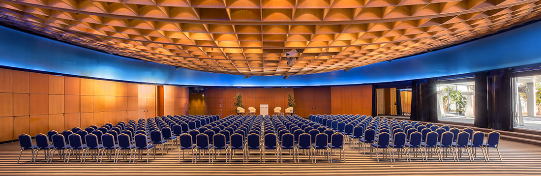 The Salle des Palmier for your wide-ranging receptions at ...